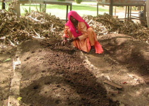 Vermicomposting in India