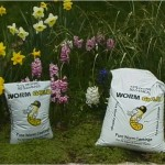 2 bags of Worm Castings